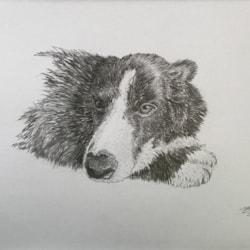 Ben by Margaret Mallows