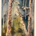 Birch Painting.1