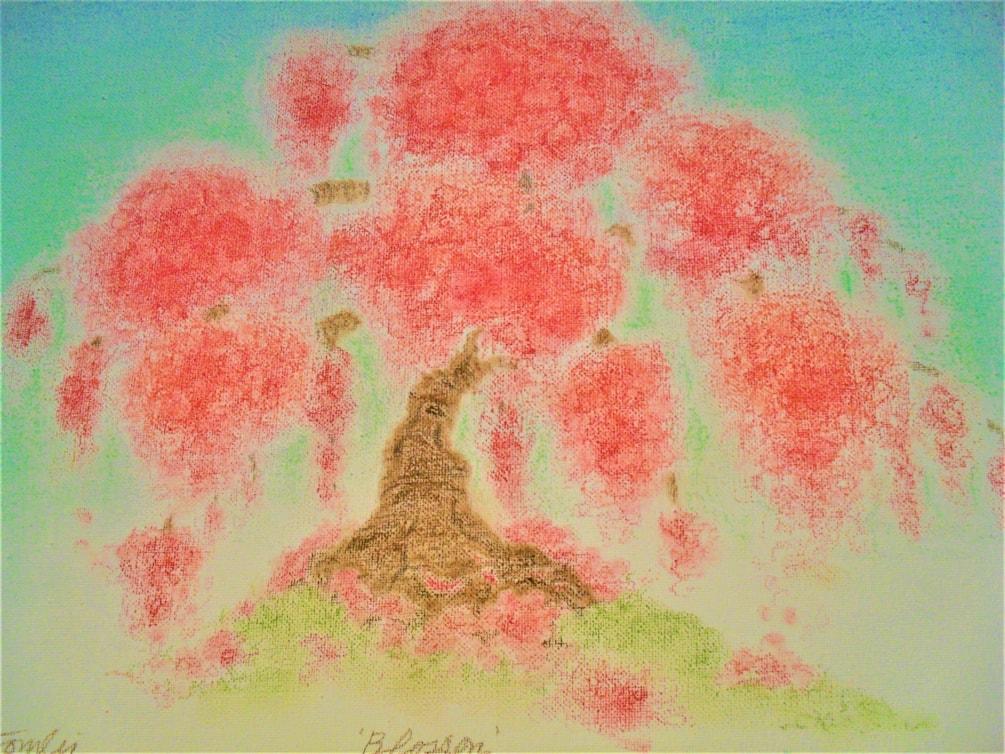 ' Blossom'