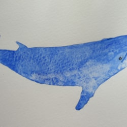 Blue Whale MD 300421