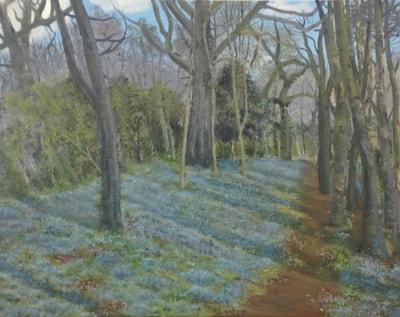 Bluebell Woods, Tony. 10 09 2021 005