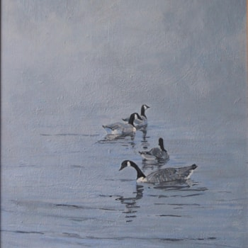 Canadian Geese (1)