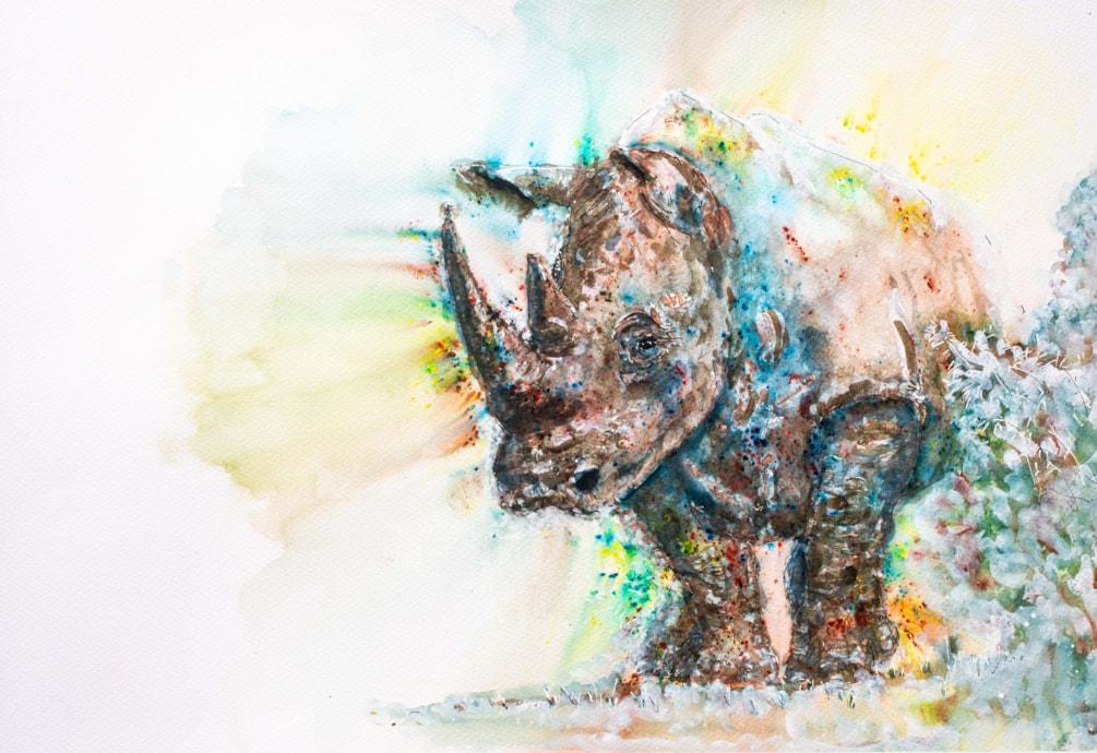 Char & Allys Rhino-803534