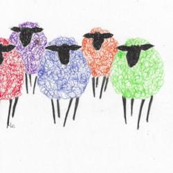 Colour Pen Sheep
