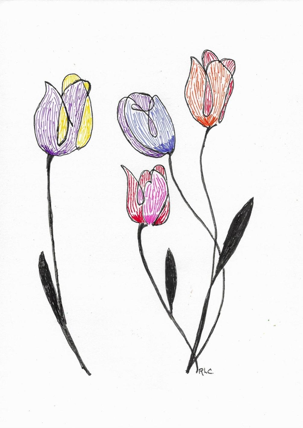 Coloured Pen (2)