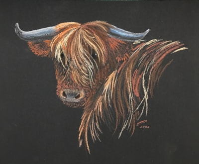Commission - Highland cow