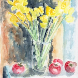 Daffodils on the window sill