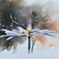 Daisy, watercolour painting by Graham Kemp