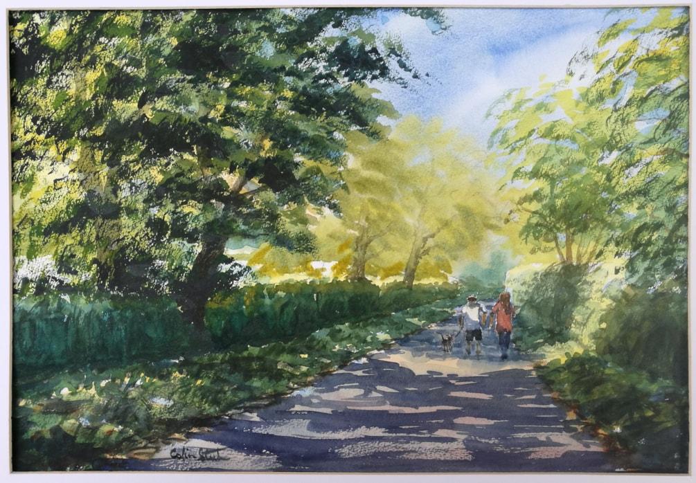 Dappled Light, Back Lane, Galleywood.