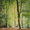 Deer in woodland image only (2)