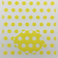 Dotty about lemon cover