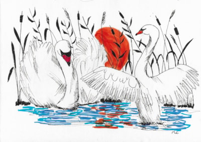 End of the Day (Swans)