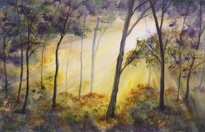 FOREST SUNBURST 72DPI