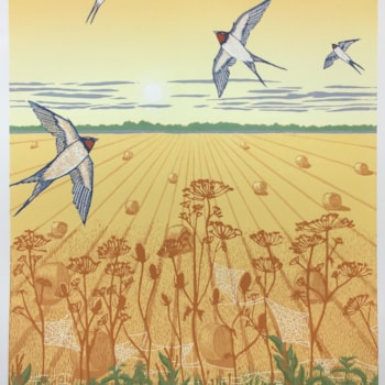 Farewell, swallows by Margaret Mallows