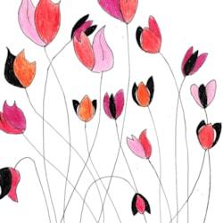 Flower Contest 5