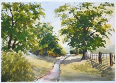 Footpath, Parklands Farm, Galleywood.
