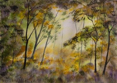 Forest Dawn 72dpi
