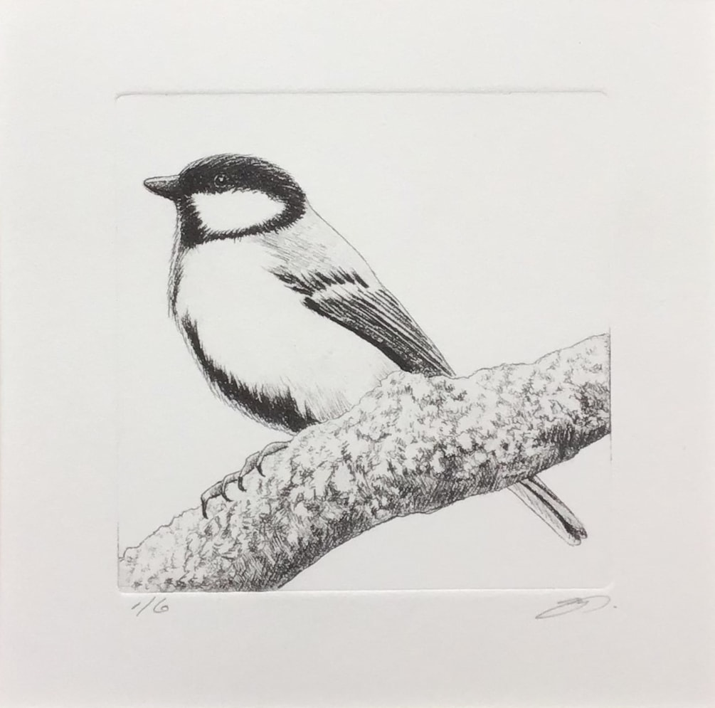 Great tit by Margaret Mallows
