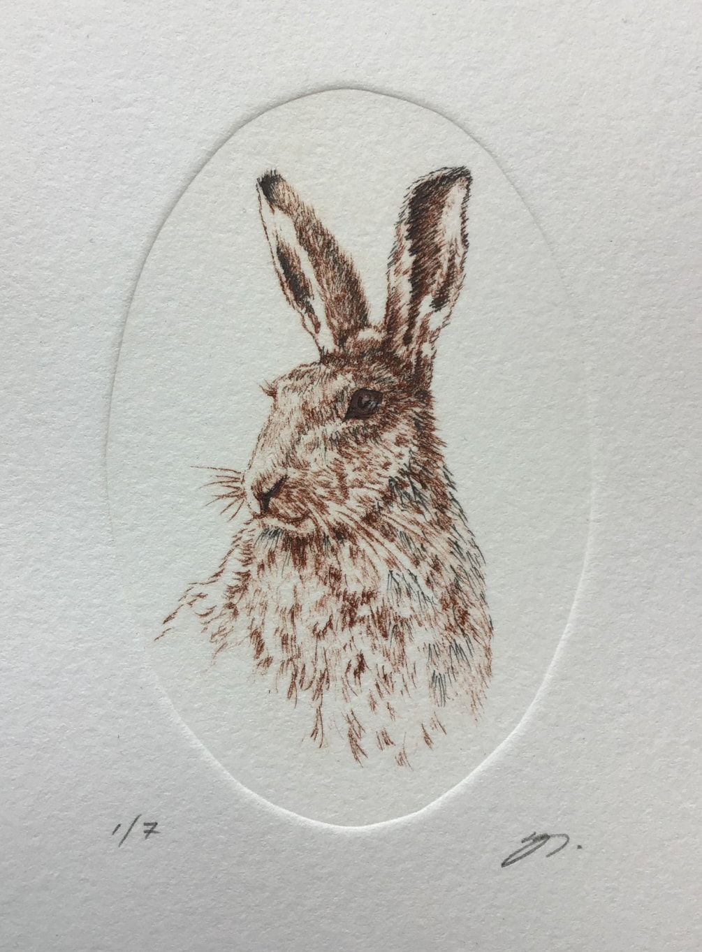 'Hare I am' by Margaret Mallows