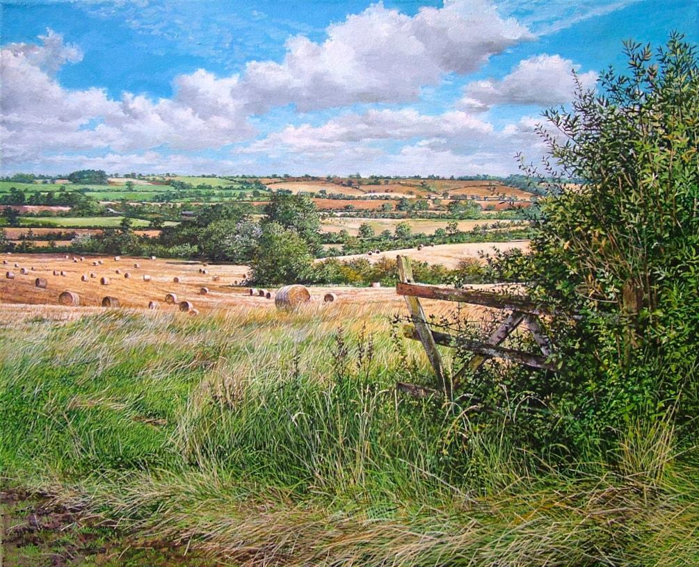 Haybale field