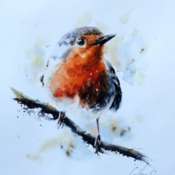 Hello Mr Robin, watercolour by Graham Kemp.