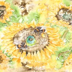 Here Comes the Sun min