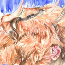 Highland Cow in Burnt Sienna min