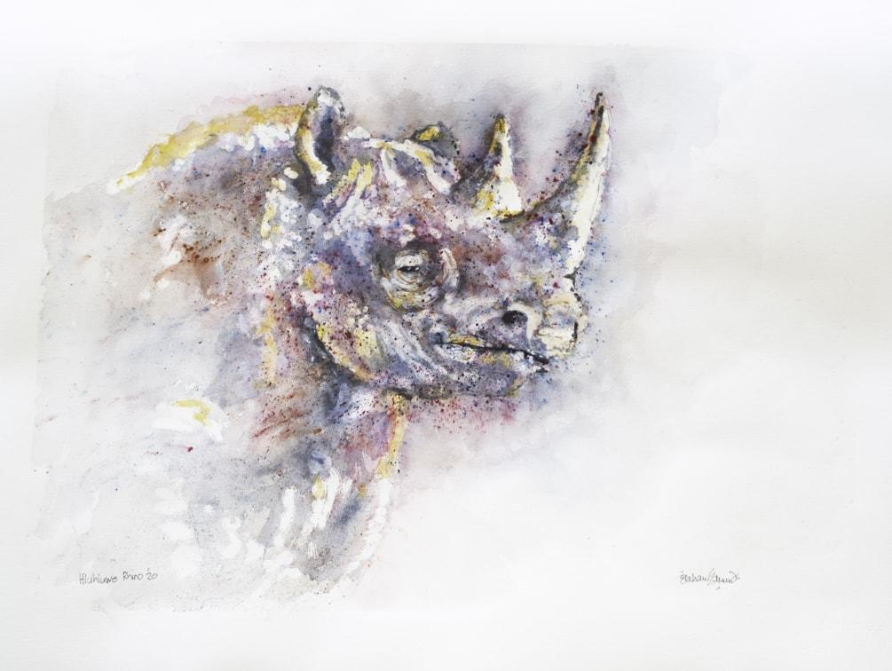 HluHluwe Rhino '20-1