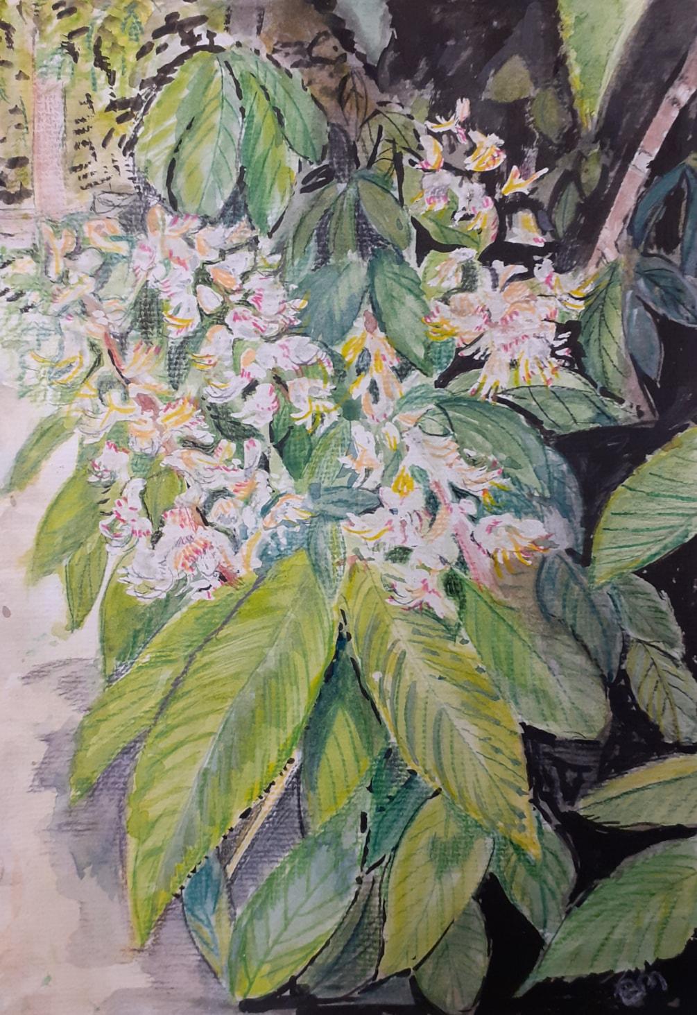 Horse Chestnut Flowers - Watercolour - April 8th 2021