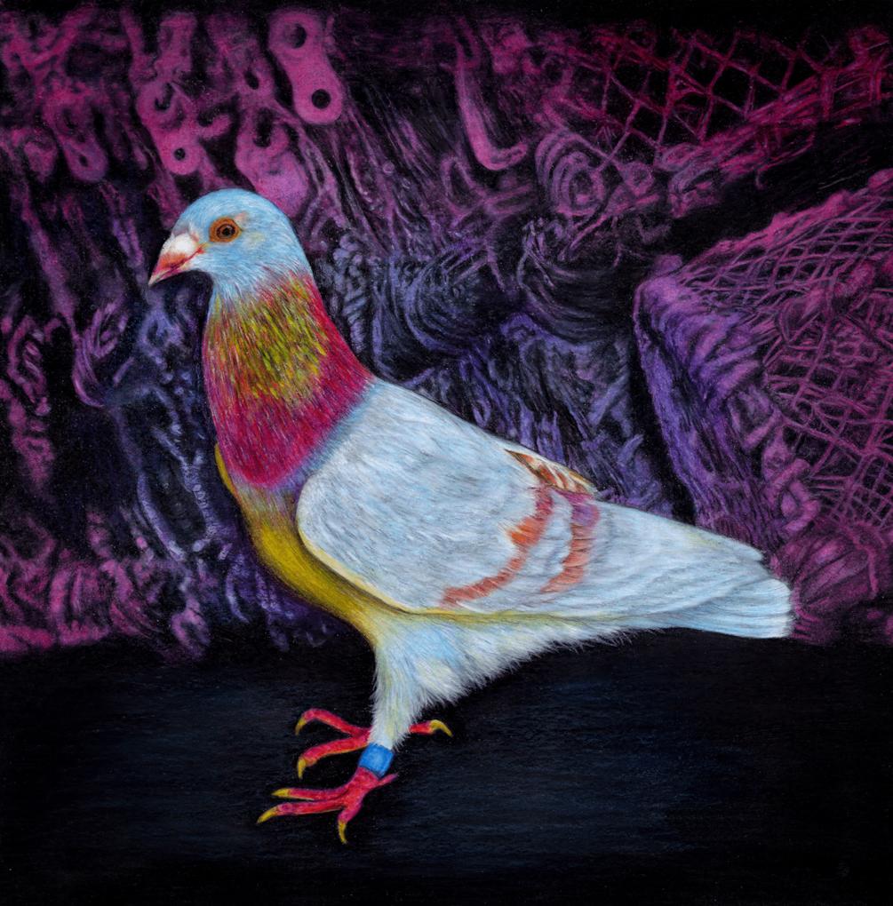 Janine_Lees-Harbour_Lights - Painters Online