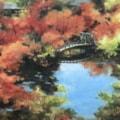 Japan autumn (永觀堂)
