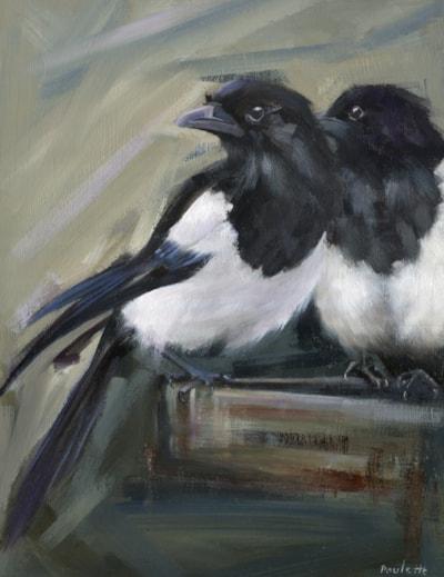Magpie Watch (2)