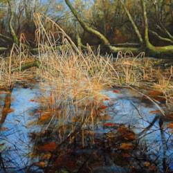 Morning Burrator Reflections, Oil On Canvas, 710 x 915 cm ( 28x36) 2020, www.eddiefordham