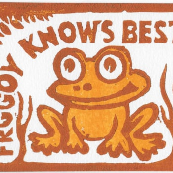 Mr Froggy