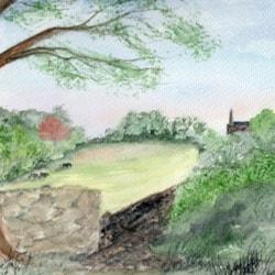 NAG View
