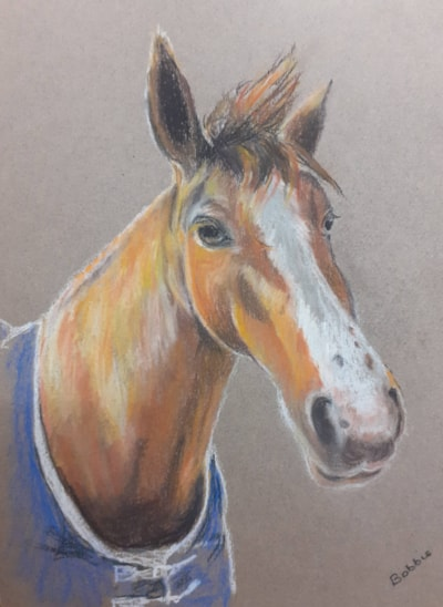 Nessa - Pastel Drawing on Coloured Paper - 13th February 2021