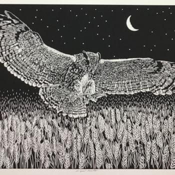 Night hunter (black) by Margaret Mallows