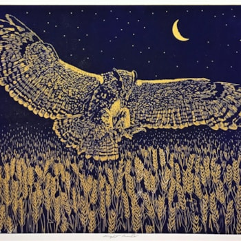 Night hunter (midnight blue over gold) by Margaret Mallows