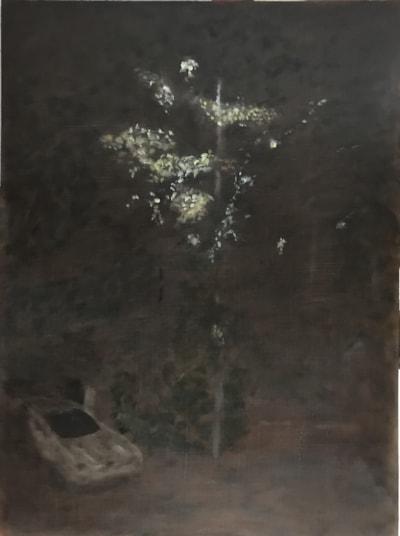 Night light IMG_0136