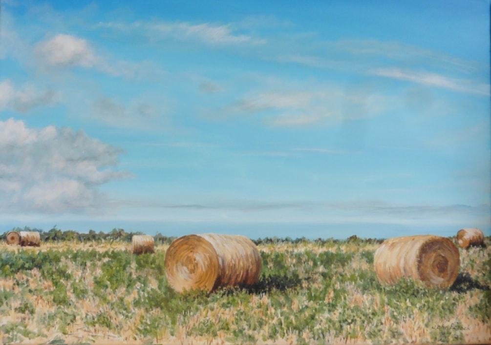 Norfolk landscape 2