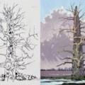 November oak