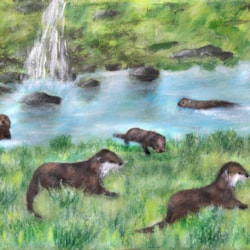 OTTERS ON THE RIVER LUNE
