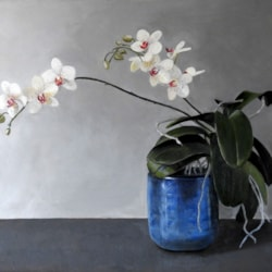 Orchid in a Blue Pot_ Collette Hughes_2021