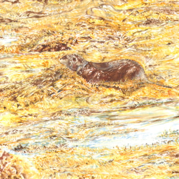 Otter down by the loch