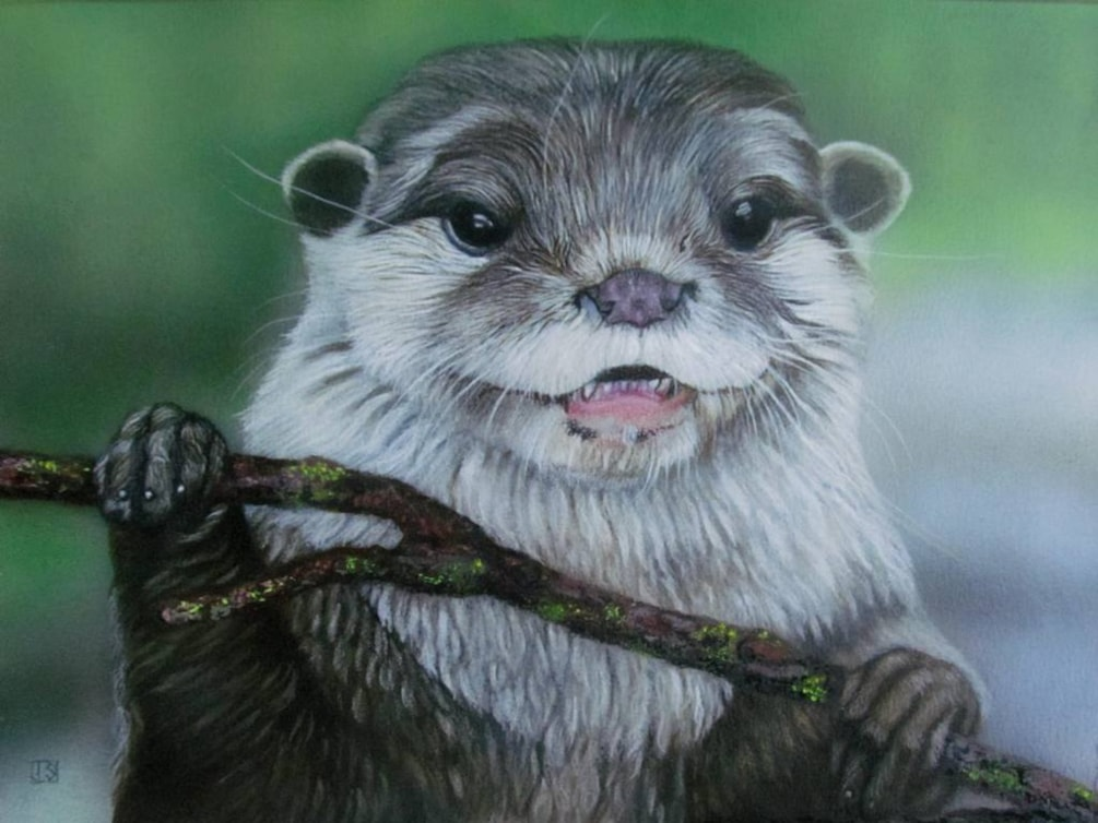 Otterly Beautiful