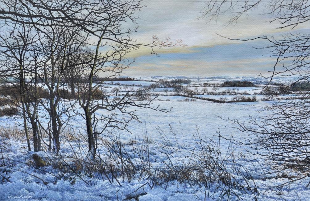Over snowy fields