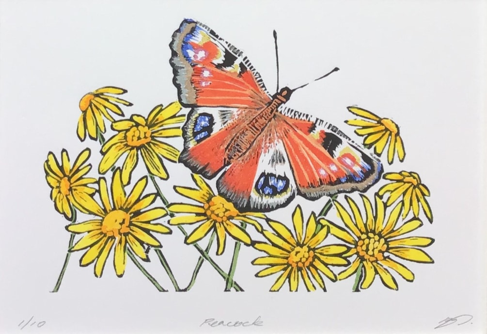 Peacock butterfly by Margaret Mallows