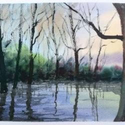 Pond, Galleywood Common