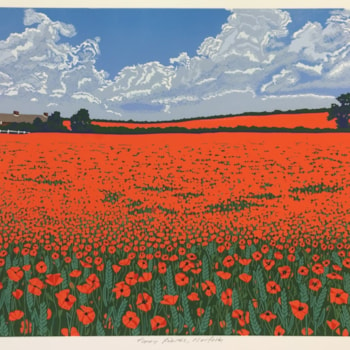 Poppy fields, Norfolk by Margaret Mallows