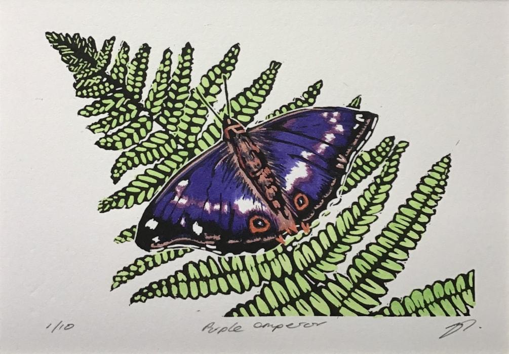 Purple emperor butterfly by Margaret Mallows